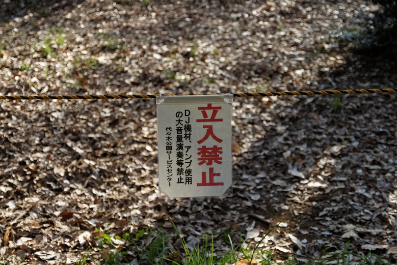 tokyo-harajuku-andwhynott