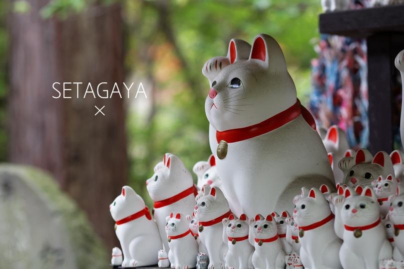 tokyo-setagaya-andwhynott