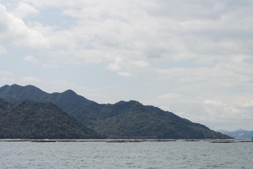 miyajima-andwhynott